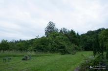 Garnisonsschuetzenhaus-Dornhaldenfriedhof-LSG_28Mai14_CClausen-2