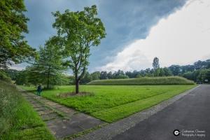 Garnisonsschuetzenhaus-Dornhaldenfriedhof-S21-Baeume_3Jun14_CClausen